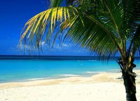 Îles de la Baie: un haut lieu touristique du Honduras