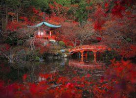 Daigo-ji: un magnifique monument vieux de près de 1200 ans