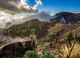Parc national du Teide: une maquette grandeur nature