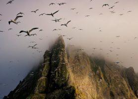 Saint-Kilda: un magnifique archipel à l'ombre des regards