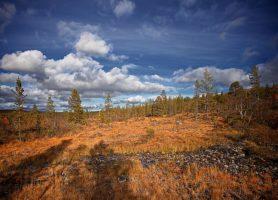 Urho Kekkonen: une zone naturelle exceptionnelle