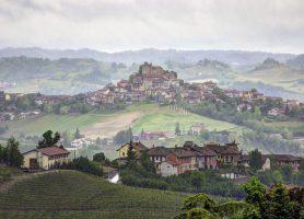 Paysage viticole du Piémont : un panorama de rêve