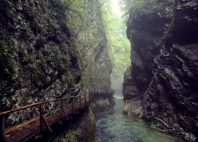 Gorges de Vintgar