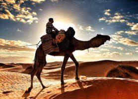 Ksar Ghilane: ce désert vous réserve une exceptionnelle balade