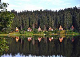 Parc national de Šumava: une extraordinaire forêt aux mille paysages