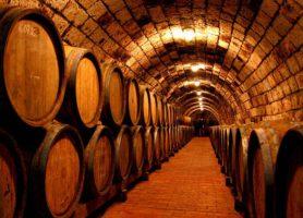 Tokaj: au cœur d'un vaste domaine viticole