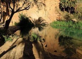 Tozeur: découvrez cette cité aux portes du Sahara