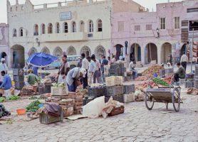 Vallée du M'Zab: au cœur d'une singulière vallée algérienne
