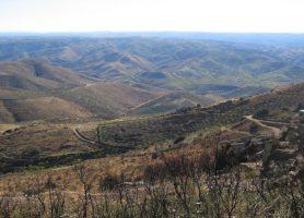 Vallée de Côa: la perle de l'art rupestre