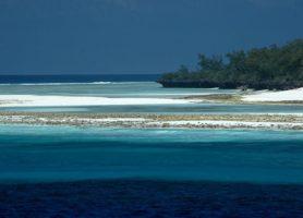 Aldabra : découvrez cet atoll hors du commun