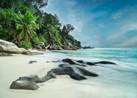 Anse Georgette: une escale sur une plage mythique