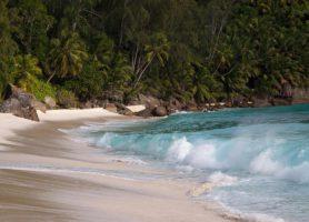 Anse Intendance: une sur une berge paradisiaque