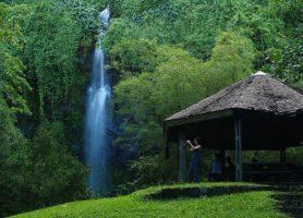 Anse des Cascades : un site naturel formidable