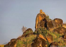 Kidepo Valley: un cadre naturel de toute beauté