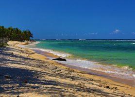 Côte de la vanille: une région remplie de merveilles naturelles