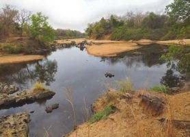 Mare aux Hippopotames: une zone humide riche de biodiversité