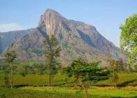 Mont Mulanje