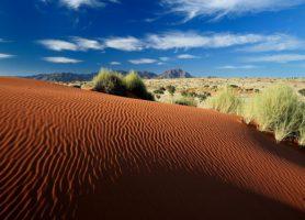 NamibRand: au cœur d'une abondante réserve en plein désert!