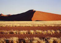 NamibRand