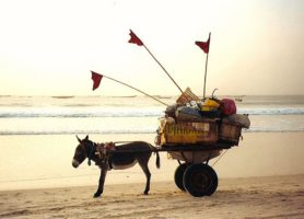 Nouakchott: la capitale de la Mauritanie