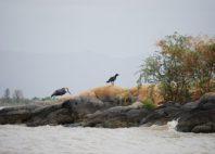 Parc national de Nech Sar
