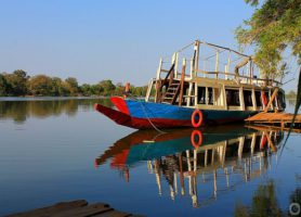 Parc national du Fleuve Gambie: archipel et chimpanzés