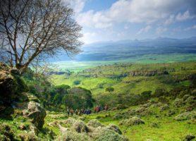 Parc national du Mont Balé: les Alpes africaines