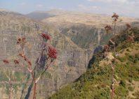 Parc national du Simien