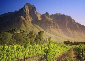 Région des vignobles: une romantique escapade