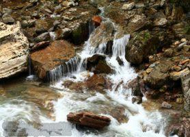 Réserve de Shennongjia: une splendide perle verdoyante