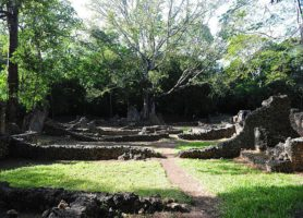 Ruines de Gede: des vestiges en pleine forêt