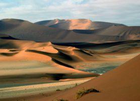 Sossusvlei: une éblouissante mer de sable à perte de vue