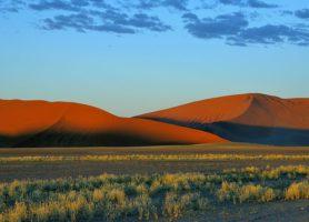 Désert du Namib: les plus grandes montagnes de sable au monde!