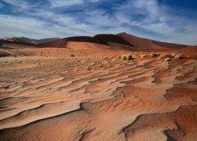 Désert du Ténéré: voici le trésor du Sahara
