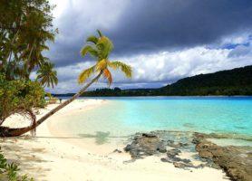 Tonga: découvrez ce magnifique coin doré
