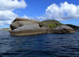Île Cocos: découvrez cet aquarium exceptionnel
