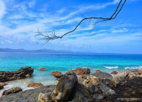 Île Doini: découvrez ce joyau incontournable de l'Océanie