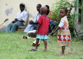 Kayas des Mijikenda: au cœur des profondeurs du Kenya