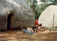 Kayas des Mijikenda