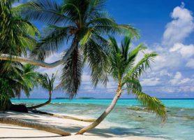 Tuvalu: offrez-vous ce séjour au bout du monde