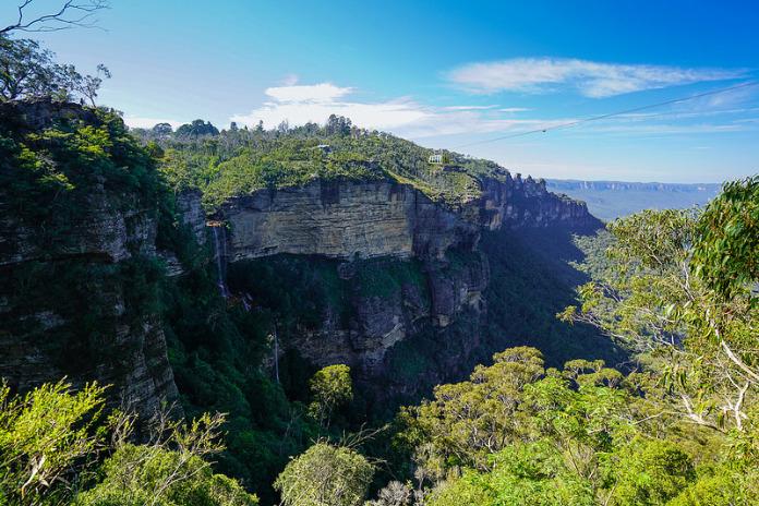 Parc national des Montagnes Bleues: un trésor inestimable