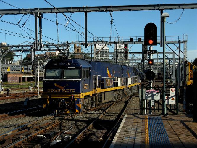 Indian Pacific : un mythe vivant des transports en Australie