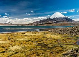 Parc national de Sajama : le naturel joyau de la Bolivie