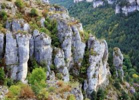 Gorges de la Jonte : une destination enchanteresse