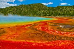 Yellowstone : 4 bonnes raisons de visiter ce parc incroyable