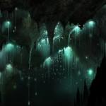 Grotte Waitomo