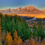Le Parc de Grand Teton
