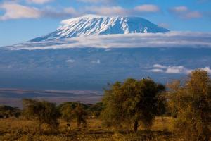 Kilimandjaro : Le toit enneigé de l'Afrique