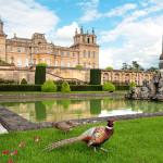 Le palais de Blenheim