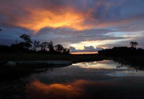 Delta de l'Okavango : de sublimes paysages à contempler